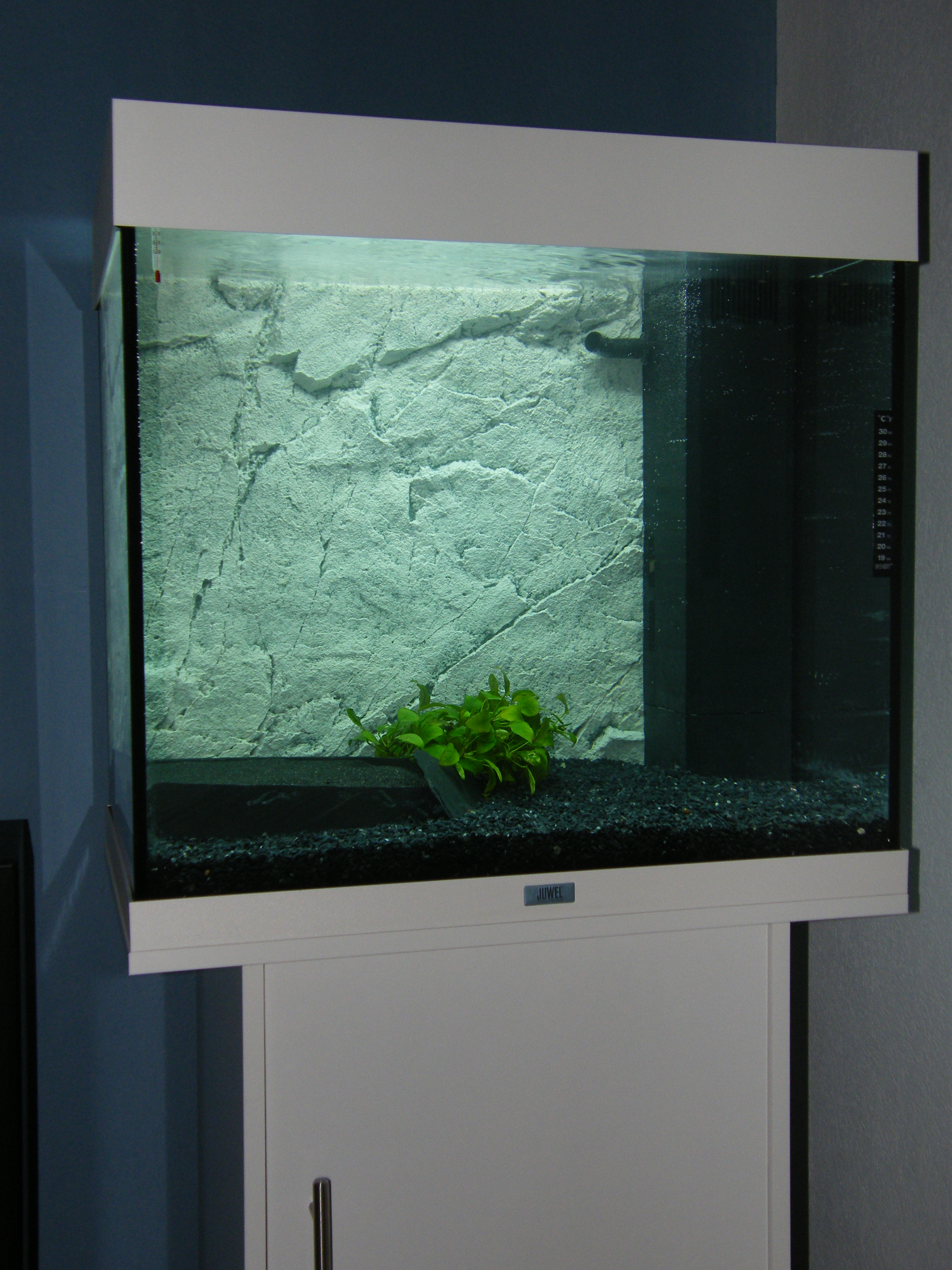 aquarium juwel lido 120 aquarium ideen. Black Bedroom Furniture Sets. Home Design Ideas